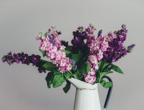Beneficios de tener flores en casa o en el trabajo